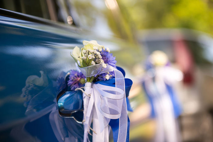 Copy Space Decorated Car Ribbon Wedding Backgrounds Blue Blue Car Bouquet Car Decor Car Decoration Close-up Concept Decorated Flower Flower Head Flowering Plant Flowers Freshness Wedding Car Wedding Day Wedding Inspiration White