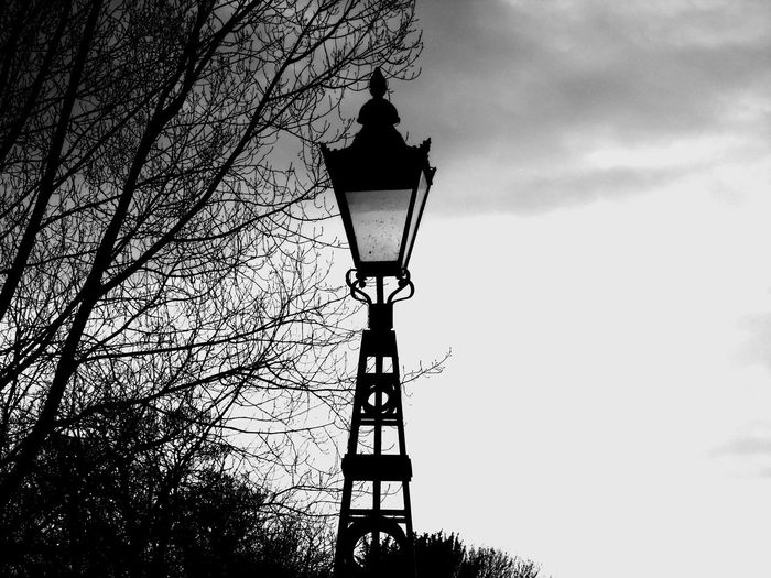 Old Street Lamp B/W edit B/w B/w Collection B/w Daily B/W Photography Bare Tree Branch Clear Sky Dusk Eye Em Scotland Lamp Lamp Post Light Lighting Equipment Low Angle View Metal No People Old Outdoors Scotland Silhouette Sky Sky And Clouds Street Light Technology Uk