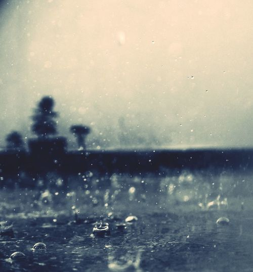coming back home after years to fall again in love with that sweet sound of monsoon Sound Of Life Rainy Days Monsoon EyeEm EyeEm Nature Lover OpenEdit Leica D-lux Typ109 Taking Photos The Moment - 2015 EyeEm Awards