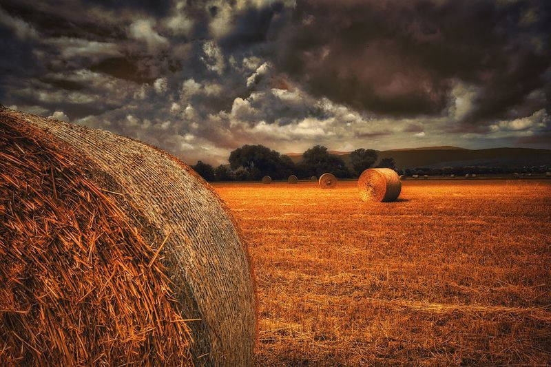 Hay Bales On Field Against Cloudy Sky At Dusk