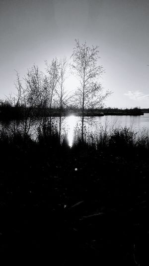 Photo prise en noir et blanc le 14 Novembre 2016 Nature Water St-Louis-de-Gonzague PhotosophLav Photo♡ Endroit Merveilleux Beauty In Nature Tranquil Scene Noir Et Blanc Blackandwhite
