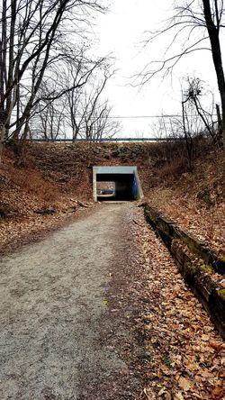 WHT Bridge Bridgeporn Bridge Porn Beauty In Nature Nature Biking Bike Ride Outdoors Trail Bikelife Pennsylvania Wht Tunnel Tunnel View TunnelPorn