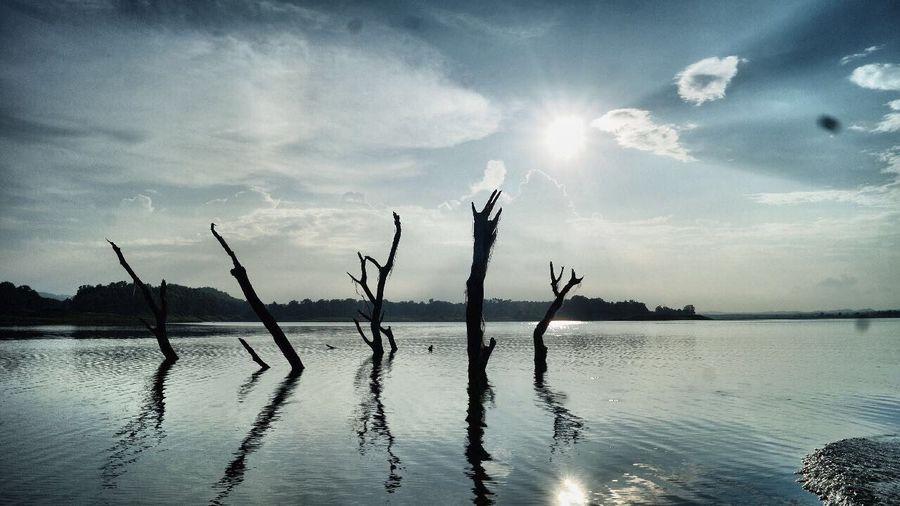 Sunshine And Shadows beautiful riverside First Eyeem Photo