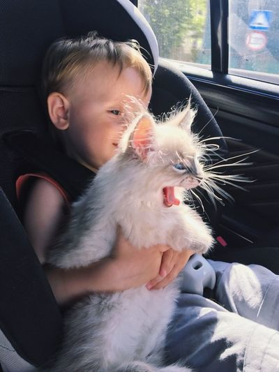 Close-Up Of Boy Holding Cat