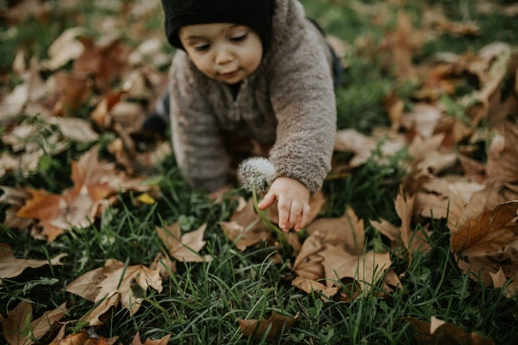 Full length of boy on field during autumn