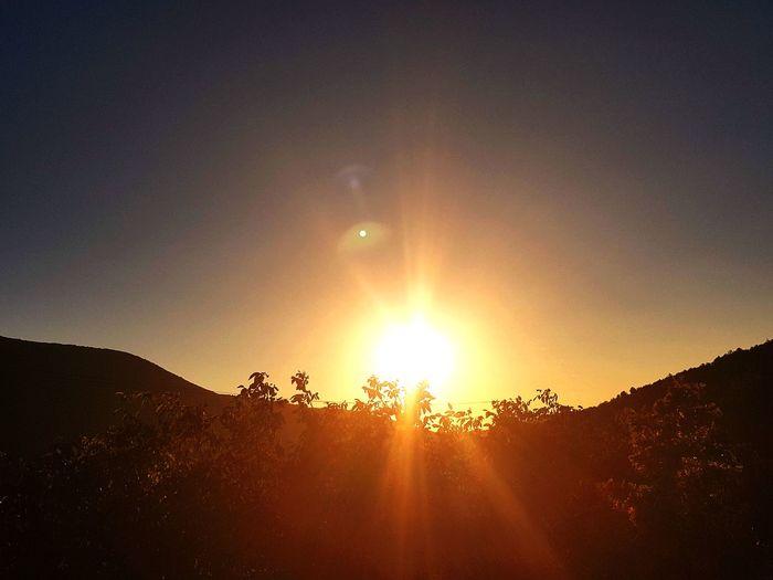 Dawn Sunrise