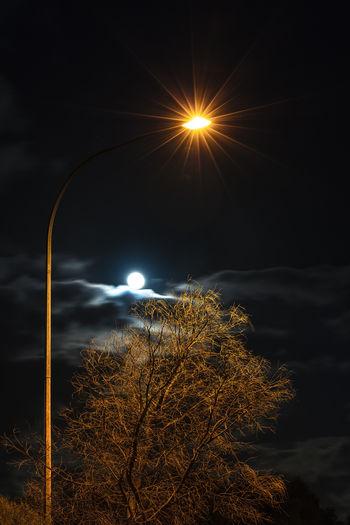 Illuminated Tree Cloud - Sky Moon Night Sky Streetlights Light And Shadow