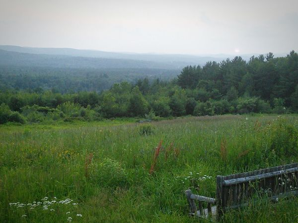 New Hampshire Hills and Feild with Bench No Filter New Hampshire Hills Feild Grass Tall Grass Bench Wooden Bench Rustic View View From Mountain Beautiful Beautiful Nature Blue Hills