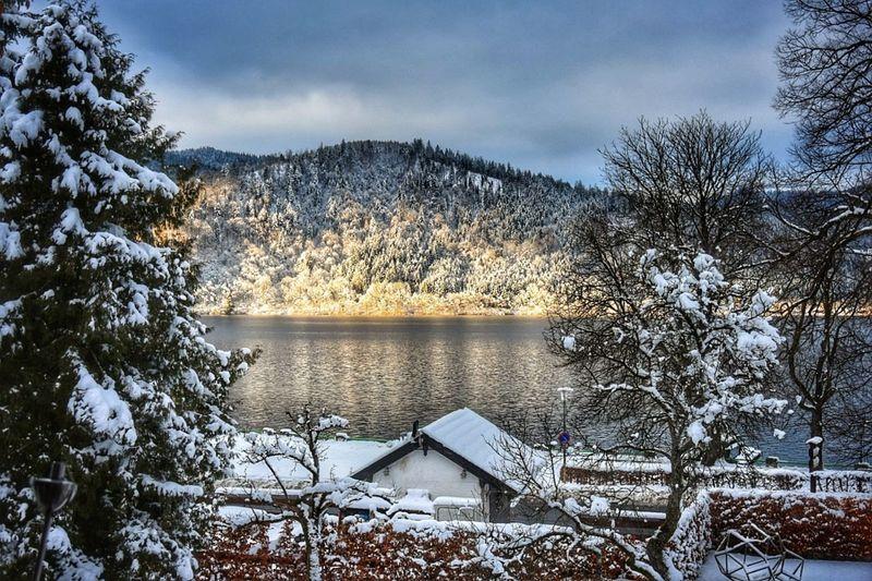 Lake Nature Day