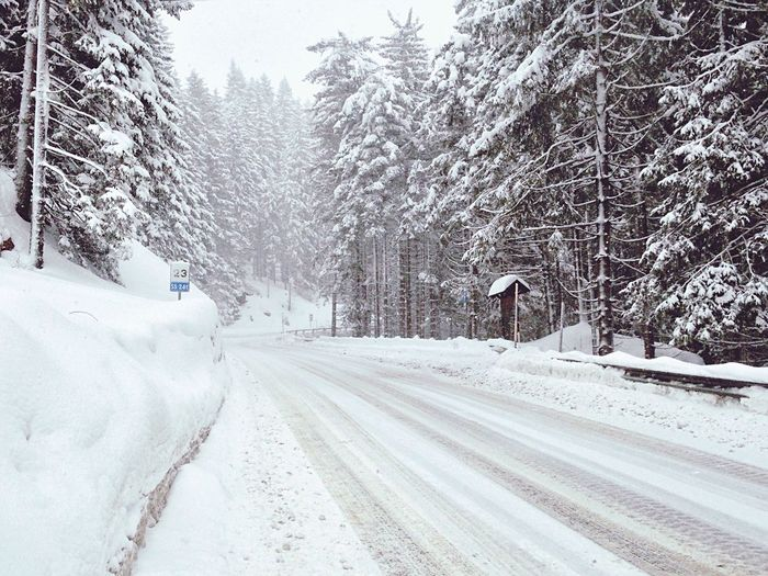Road Snow Winter Wintertime Winter Wonderland White Karersee Lake Carezza Südtirol Val D'Ega Eggental Italy Landscape South Tyrol Alto Adige Trentino Alto Adige Tree Forest Fir Tree Nature March