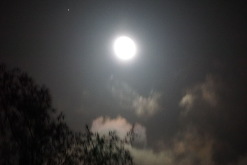 The Moon Is Bright Tonight. The Night View