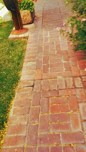 The Road Not Taken Bricks Path Oldtown