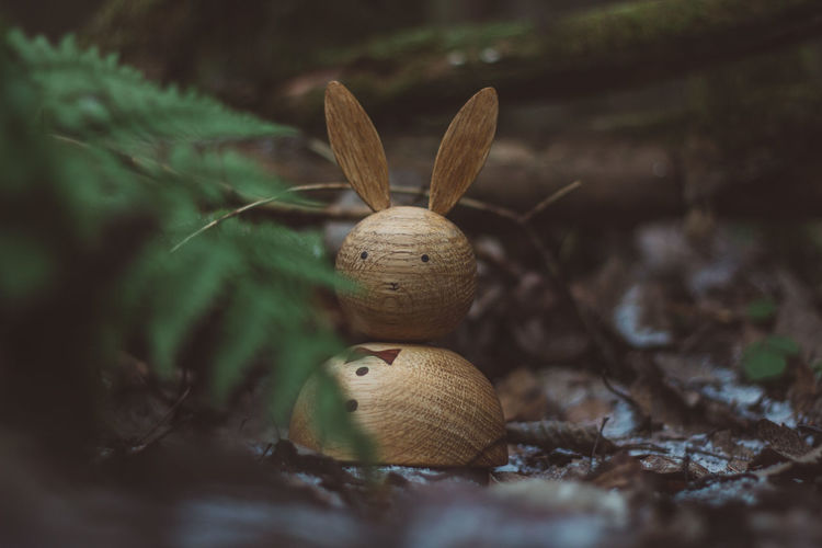 Wood Wood - Material Wooden Toy Toys Wooden Toys Rabbit Selective Focus Representation No People Close-up Nature Day Plant Animal Representation Land Creativity Leaf Plant Part Holiday Figurine  Brown Art And Craft Field Outdoors Stuffed Toy