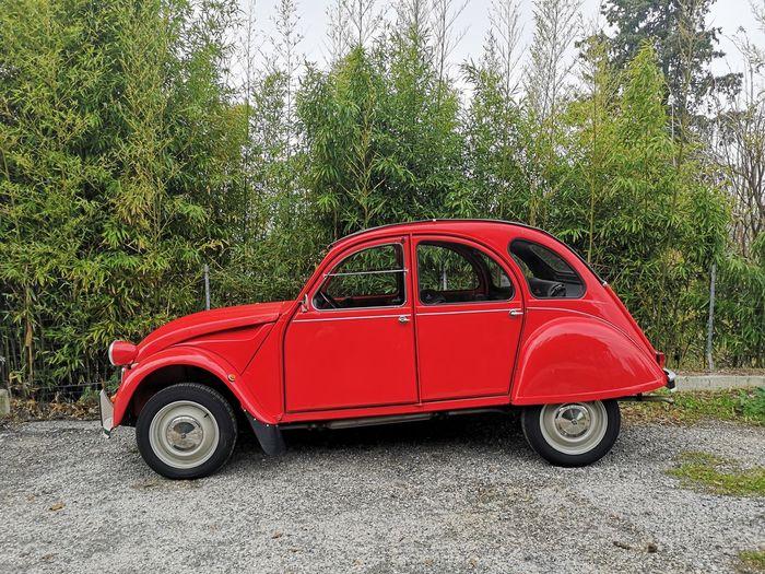 Red vintage car on field