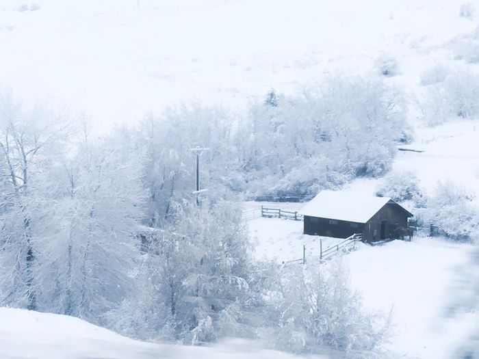 Winter Snow Cold Temperature Weather Nature Beauty In Nature White Color No People Scenics Tranquil Scene Frozen Outdoors Day Tranquility Landscape Tree Built Structure Architecture Sky