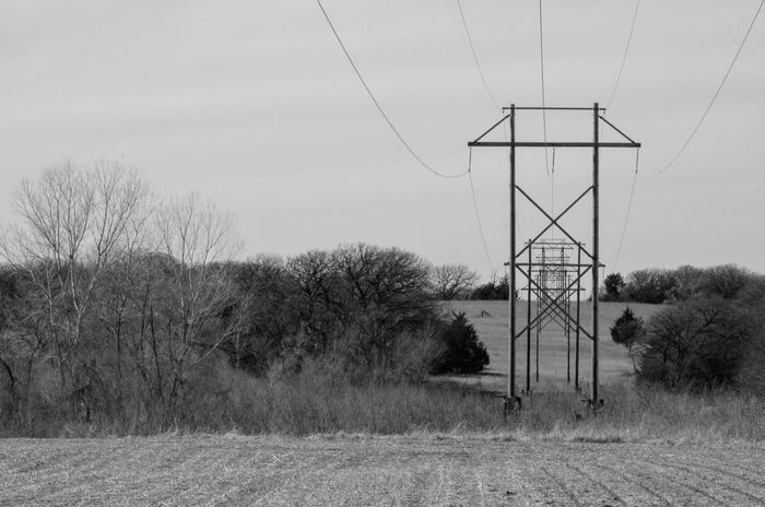 Visual Journal February 2017 Thayer County, Nebraska Bare Tree Cable Connection Day Electricity  Electricity Pylon EyeEm Best Shots Field Landscape_Collection MidWest Nature Nebraska No People Oregon Trail Outdoors Photo Diary Power Line  Power Supply Rural America Sky Small Town Stories Tree Visual Journal Water Conservation