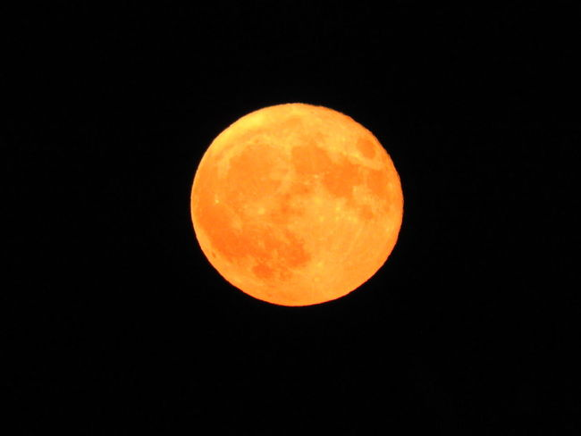 Astronomy Black Circle Clear Sky Dark Night Dark Night Of The Soul Dark Night 🌙 Sweet Dreams Dark Photography Full Moon Idyllic Majestic Moon Moon Moon Light Moon Shot Moon Shots Moon Surface Night Night Photography Night Sky Nightphotography Orange Color Planetary Moon Sky Tranquil Scene