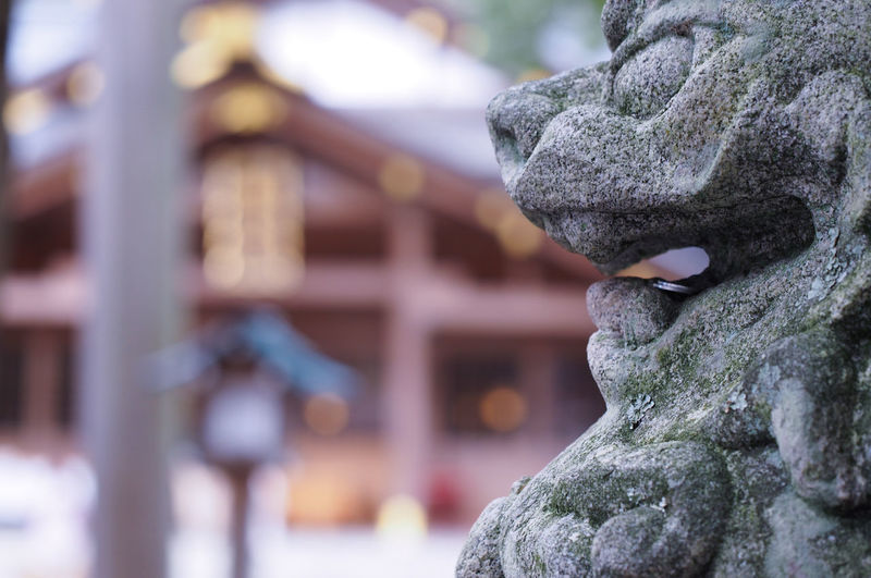 Japan Photography EyeEm Gallery Japan EyeEm 猿田彦神社