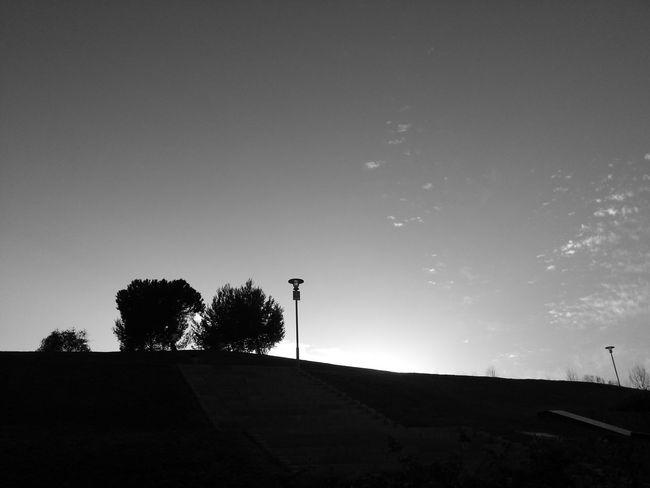 Summertime Monochrome Black And White Lisbon