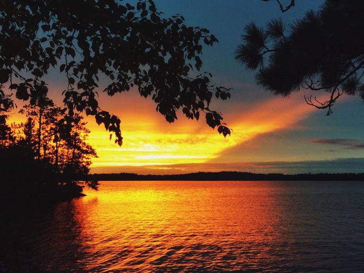 Minnesota sunset Sunset Outdoors No People Reflection Water Bright Colors Tree Beauty In Nature Scenics Orange Color Nature Silhouette Tranquility Tranquil Scene Sky Reflection Cloud - Sky Horizon Over Water Lake Minnesota Minnesota Nature North Woods  Sunset_collection Sunset Silhouettes Sky_collection