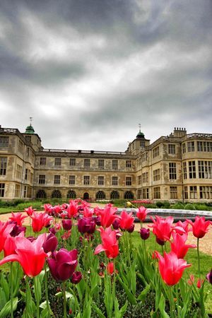 Audley End Statley Homes Flowers Beautiful Home England Uk England Saffron Walden Canonphotography Sigma Snapseed IPad Edit EyeEm Best Shots EyeEm