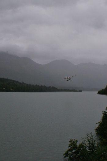 Sea plane landing Sea Plane Alaska Bush Plane Found On The Roll
