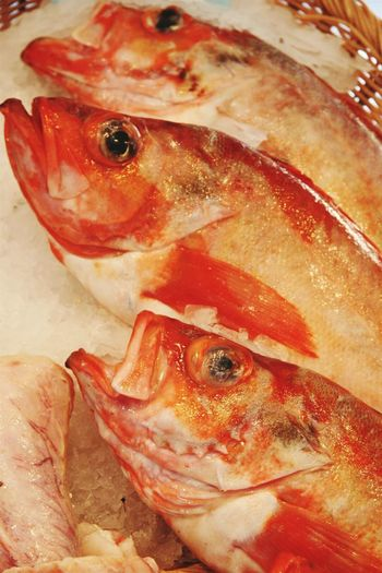 Fish Seafood Animal Themes Seafish Eyeemphotography EyeEm Best Shots Food Photography Close-up Shot Close Up Photography FishEyeEm Fish Eye Details In Close Up Detail Photography