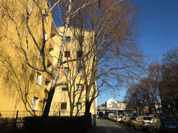 Street amidst bare trees and buildings against sky
