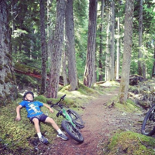 Nothing like a moss-lounger after a long climb. Mtsthelens  LavaCanyonTrail Campvibes CampR