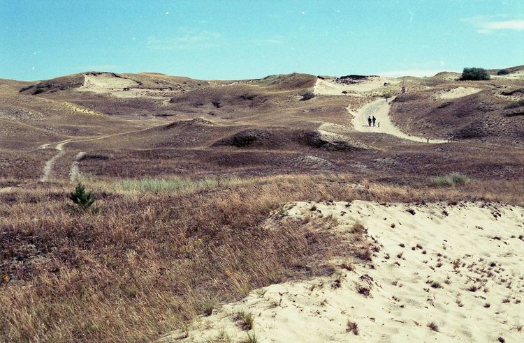 Baltic Sea Curonian Spit Day Dunes Lithuania Nature Neringa Nida Sky Summer