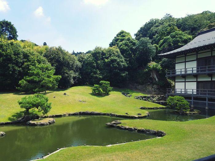 kenchoji Kenchoji Temple Kamakura Japan Garden Tree Water Sky Architecture Green Color Grass