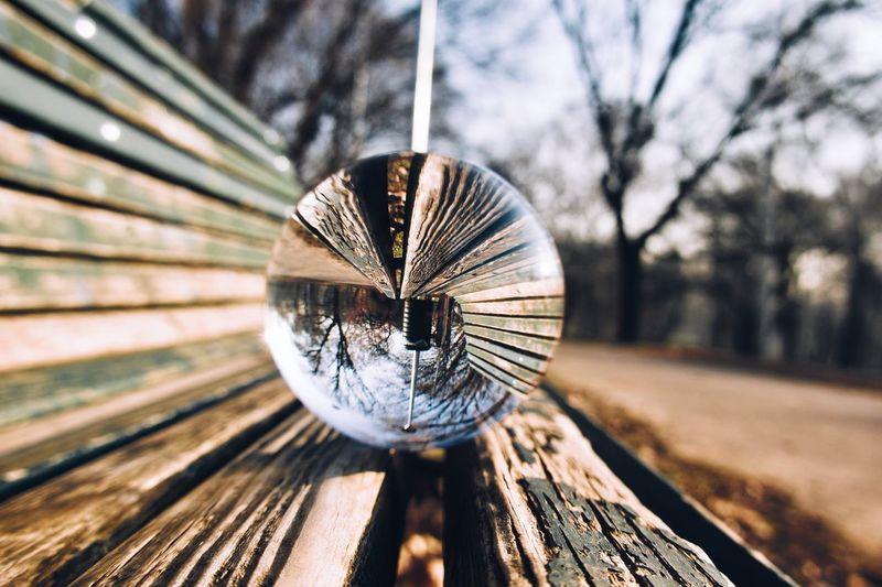 Close-up of umbrella on wood