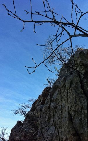 Looking up... Hiking