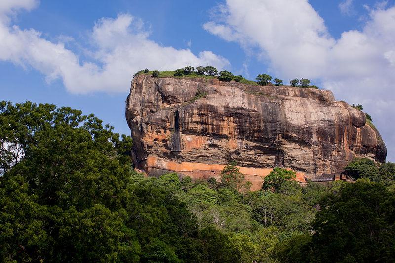 ASIA Green Color Lion Rock Lion Rock Mountain Must See Rock Sri Lanka Forest Landmark Must Visit Places Sigeria