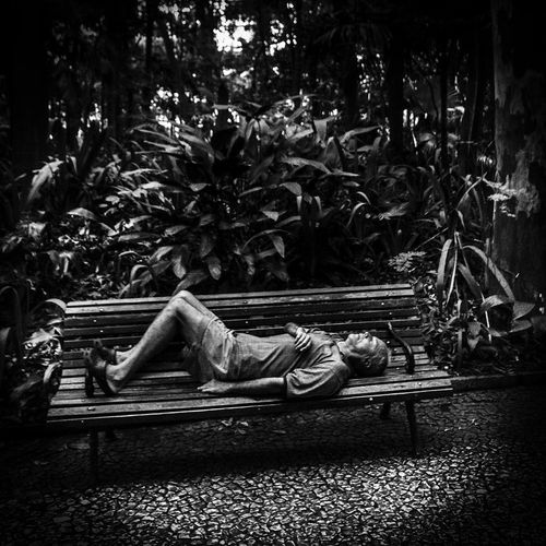 after lunch After Lunch Lunch Resting Resting Time Resting Place Sleeping Lying Down Relaxation Full Length Tree One Man Only Only Men One Person People Day