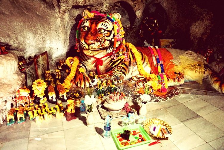 Tiger Religion Statue Spirituality Celebration Event Ceremony Figurine  Cultures No People Indoors