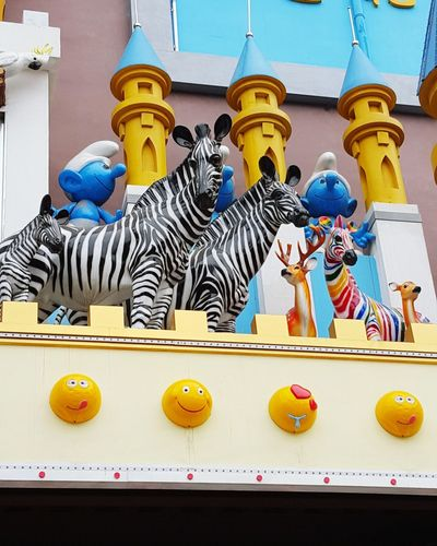 Zebra <3 Zebra♥