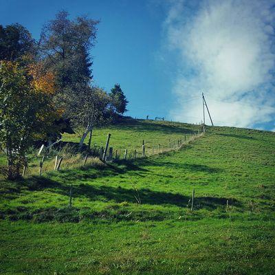 Mynewkitchenwindowview Windowview Bluesky Autumn Oktober Swiss Switzerland