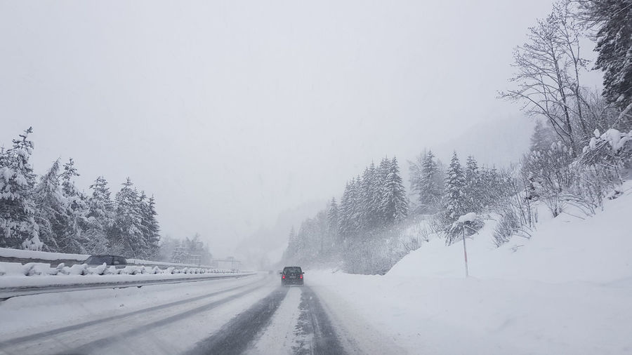 Snow Cold Temperature Winter Transportation Mode Of Transportation Plant Car Motor Vehicle Land Vehicle Road Nature The Way Forward Direction Day Beauty In Nature Covering Scenics - Nature White Color No People Extreme Weather Snowing Outdoors Driving
