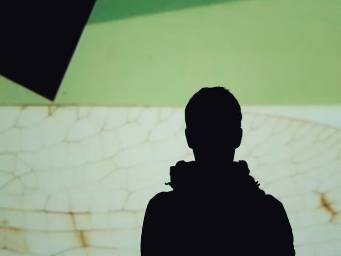 | My shadow | BrunoMunari|AriaTerra Video Light And Shadow Green Color EyeEmItaly Silhouette One Person People Rear View Indoors  Standing EyeEm Ready