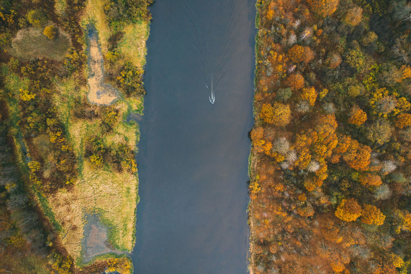 The motor boat sails along a narrow river. autumn forest on both sides.