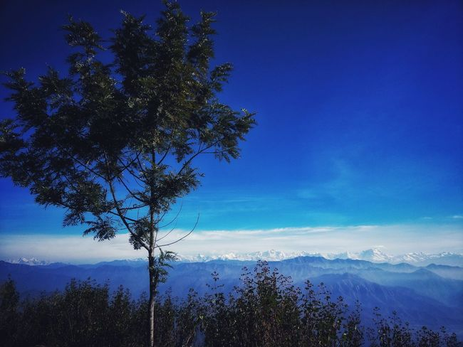 Garwhal Hills, Uttarakhand Mountain Range Blue Skies And White Clouds Sun Rays Landscape Hill Station White Clouds High Altitude Chilly Weather Snow Day Outdoors Hiking Adventures Clear Sky Rocky Mountains Snow Capped Mountains Mountain Peak Daytime Trekking #travelling #sightseeing Hill Stations Tree Portrait Forest Weather Condition Cold Temperature Cold Frozen Winter Countryside Season  Snow Covered Silhouette The Traveler - 2018 EyeEm Awards