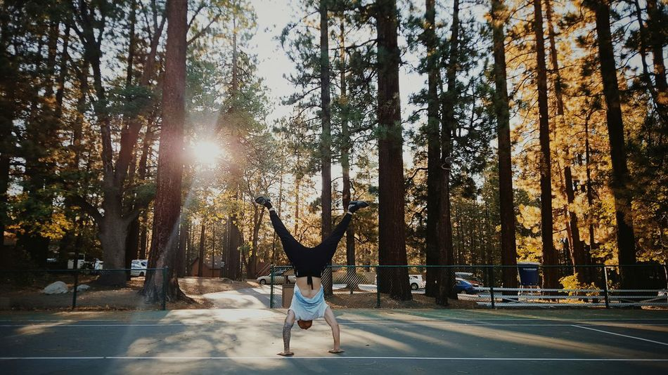 Handstand  Nature Big_bear Calisthenics Rawmovement TwentySomething Mybestphoto2015 Alternative Fitness
