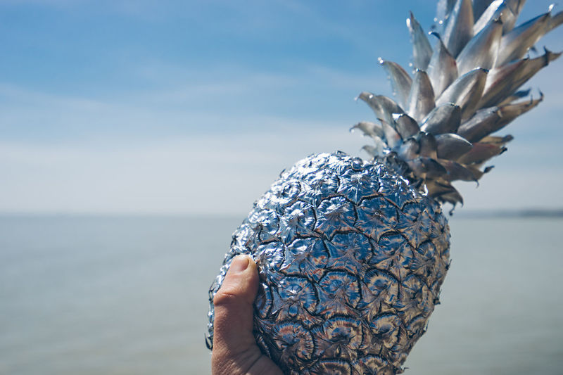 Cropped hand holding pineapple at beach