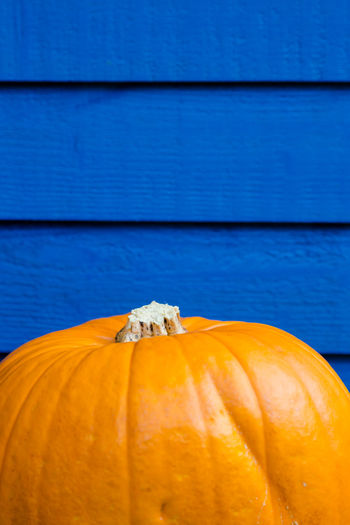 Orange pumpkin on blue shad background vibrant colour match Autumn Background Blue Body Space Close-up Contrast Copy Space Decoration Ecology Garden Halloween Harvest Nature Orange Color Pumpkin Realistic Shopping Timbers Vibrant Color Yellow TakeoverContrast