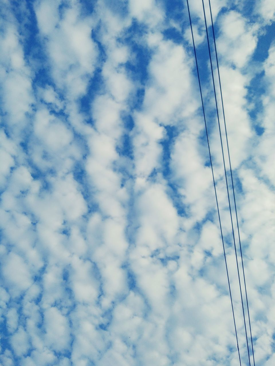 cloud - sky, low angle view, sky, cable, no people, connection, day, blue, outdoors, technology, nature, beauty in nature