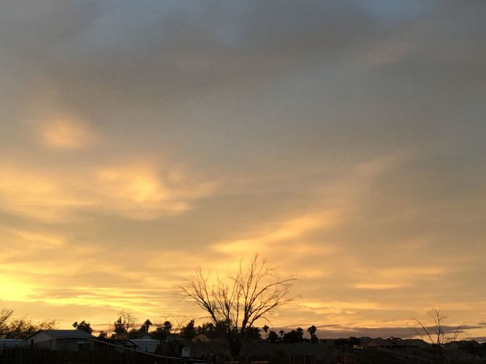 Sky Sunset Tree Silhouette Nature Beauty In Nature Tranquility No People Cloud - Sky Outdoors Tranquil Scene Scenics Architecture Day No Edit/no Filter Neighborhood Out My Front Door
