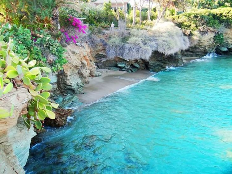 Nature Beautiful Beach View Amazing Blue Water Island Summer Views Memorise Landscape Rocks Greece Sea Flowers