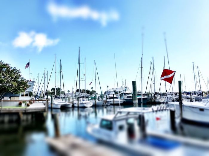 Pay Docks Nautical Vessel Moored No People Water Flag Mode Of Transport Sky Day Mast Transportation Patriotism Outdoors Harbor Sailboat Nature Close-up Dockside Dockside View Sailboats Beach House Wall Art Water Reflections Waterfront New Smyrna Beach Fl