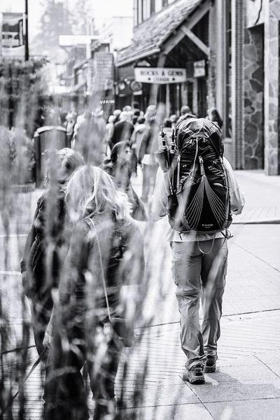 solo backpacker in downtown Banff Pocket_bnw Bnw_diamond Bnw_captures Jj_blackwhite Bnw_demand Rsa_bnw Ptk_bnw Bw_photooftheday Bnw_mystery Loves_bnw Bwsquare Amateurs.bnw Ig_captures_bw Blackandwhite Monochrome Streetphotography Downtown Banff  Alberta Hiker City Friendship Full Length Men Happiness City Life Crowd City Street